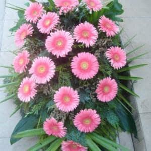 kwiaty05